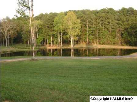 1727 Convict Camp Rd., Guntersville, AL 35976 Photo 5