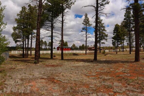 2237 Bear Claw Dr., Overgaard, AZ 85933 Photo 6