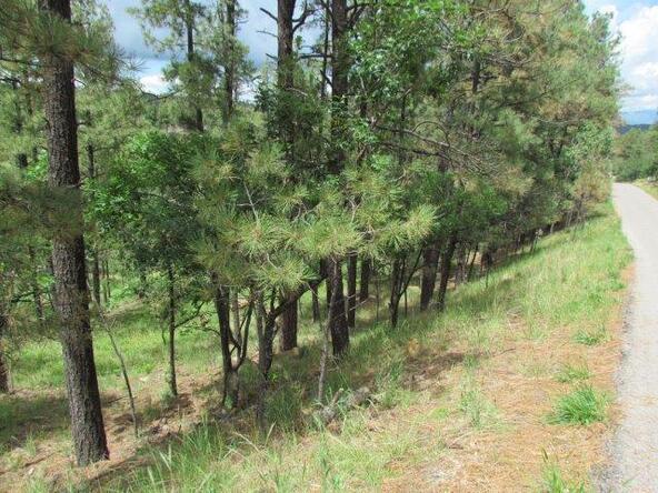 119 del Monte Dr., Alto, NM 88312 Photo 5