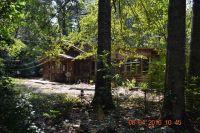 Home for sale: 920 Lee Rd. 282, Salem, AL 36874