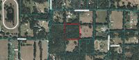Home for sale: Tbd N.W. 200 St. Rd., Micanopy, FL 32667