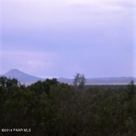 2221 N. Bolinda Ln., Ash Fork, AZ 86320 Photo 18