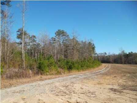 200 Fox Run, Deatsville, AL 36022 Photo 1
