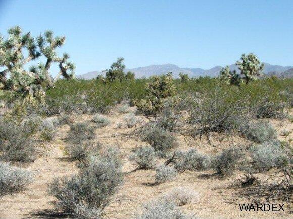 Parc 457 Shadow Ln., Yucca, AZ 86438 Photo 8