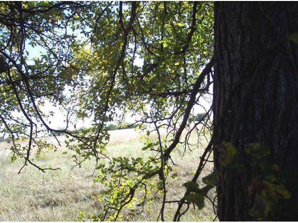 2 Hwy. 121, Bonham, TX 75418 Photo 5