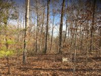 Home for sale: Lot 3 Roughshod Hollow, Rocky Top Rd., Byrdstown, TN 38549