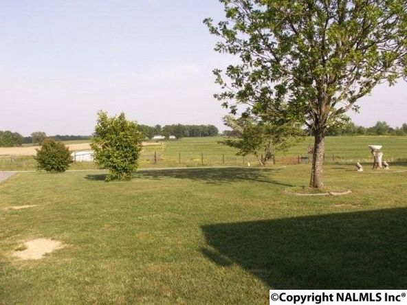 3372 County Rd. 52, Rogersville, AL 35652 Photo 26