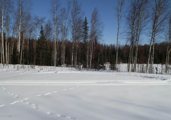 24810 W. Long Lake Rd., Willow, AK 99688 Photo 3
