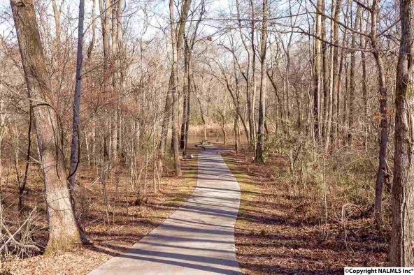 4733 Autumn Dusk Dr., Owens Cross Roads, AL 35763 Photo 14