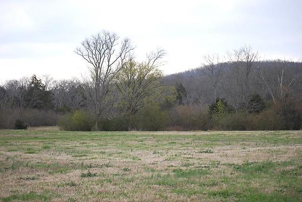 118 Hawksbeard Ct., Murfreesboro, TN 37128 Photo 5