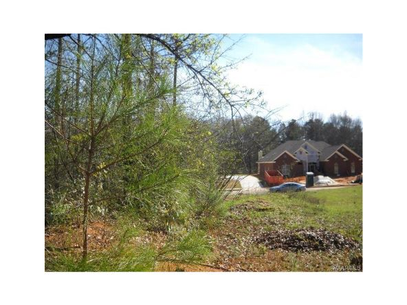 668 Pimblico Rd., Montgomery, AL 36109 Photo 11
