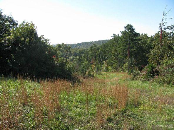 Smith Mountain Rd., 97 Acres, Jasper, AR 72628 Photo 7