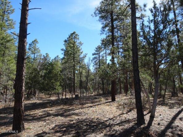 1090 W. Sadler Ln., Lakeside, AZ 85929 Photo 6