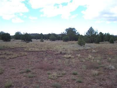1805 W. Cumberland Parcel J Rd., Ash Fork, AZ 86320 Photo 17