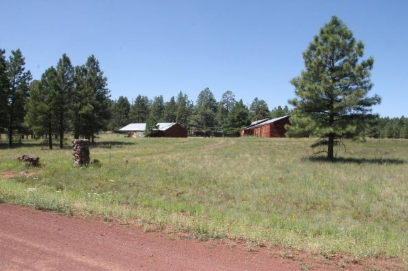 630 Cooper Ranch Rd., Williams, AZ 86046 Photo 10