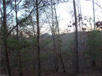 Home for sale: 000 Vein Mountain Rd., Nebo, NC 28761