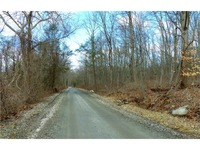 Home for sale: Lot #4 Old Northville Rd. East, New Milford, CT 06776