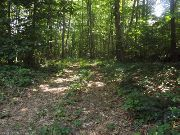 Home for sale: 102 East Haddam Colchester Tnpk., East Haddam, CT 06469