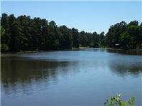 Home for sale: 0 Pin Oak, Plantersville, TX 77363