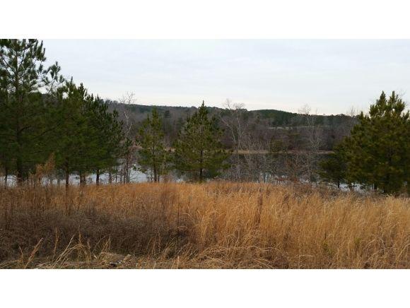 234 Co Rd. 907 (Lot 9), Crane Hill, AL 35053 Photo 5