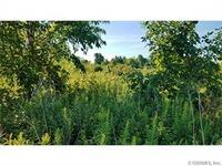 Home for sale: 4481 Scott Rd., Keuka Park, NY 14478