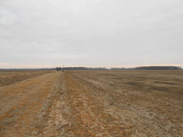 402.93 Acres Long Creek, Waldenburg, AR 72475 Photo 18