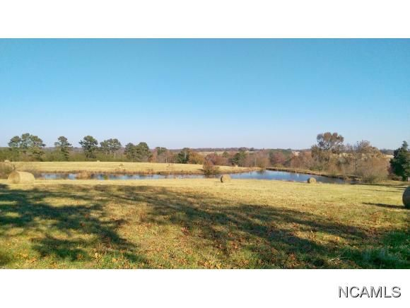 227 County Rd. 1431, Cullman, AL 35179 Photo 28
