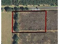 Home for sale: Lots 1&2 Us 27 Hwy., Mayo, FL 32066