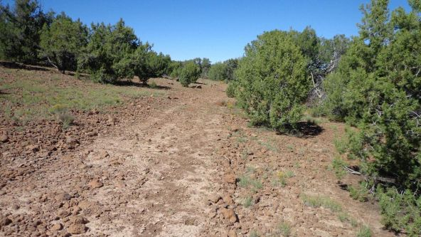 514 Westwood Ranch Lot 514, Seligman, AZ 86337 Photo 19