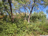 Home for sale: 131 Turner Cir., Harvest, AL 35749
