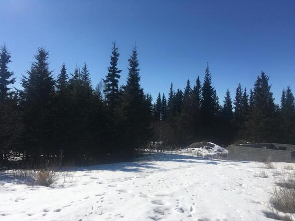 17862 Arcturus Loop, Ninilchik, AK 99639 Photo 35