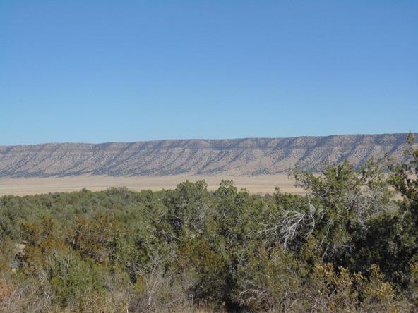 57154 N. Bridge Canyon Parkway, Seligman, AZ 86337 Photo 6