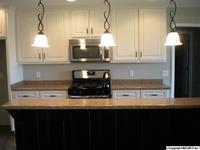 Home for sale: 169 Craten Dr., Rainsville, AL 35986