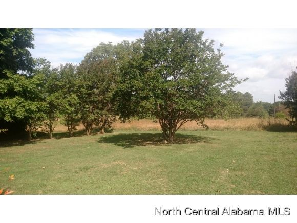2108 Co Rd. 1693, Holly Pond, AL 35083 Photo 13