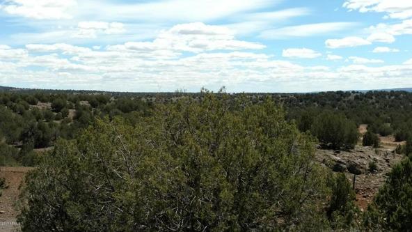 243 N. Juniperwood Ranch --, Ash Fork, AZ 86320 Photo 3
