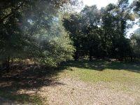 Home for sale: 296 Winding Rd., Hartford, AL 36344