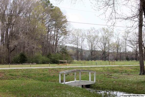 3950 Old Hwy. 431, Owens Cross Roads, AL 35763 Photo 12