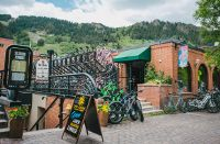 Home for sale: 315 E. Hyman, Aspen, CO 81611