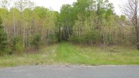 Home for sale: 195 Acres Old 38 Rd., Amberg, WI 54102