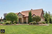 Home for sale: 12970 Silver Fox Dr., Lemont, IL 60439
