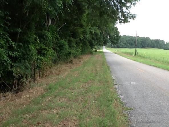 1423 County Rd. 2276, Glenwood, AL 36034 Photo 9