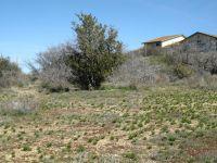 Home for sale: 16470 S. Cordes Lakes Dr., Mayer, AZ 86333