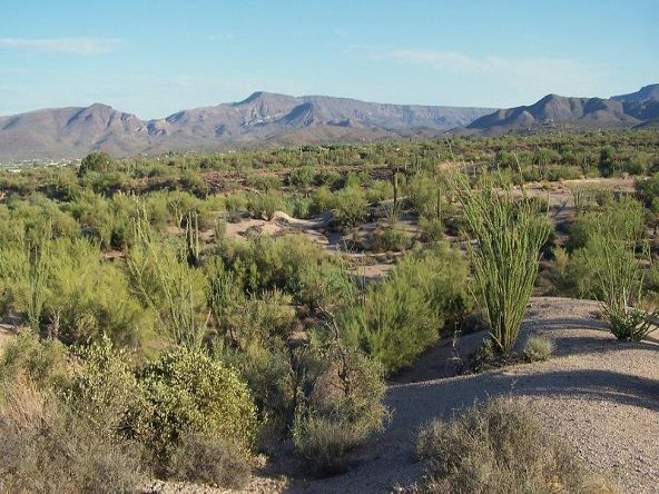 7243 E. Valley View Cir., Carefree, AZ 85377 Photo 7