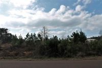 Home for sale: Tbd Cr 3633, Longview, TX 75605