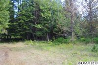 Home for sale: Bugleing Elk Rd., Weippe, ID 83553