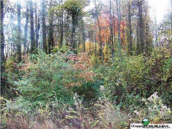Union Hill Rd., Union Grove, AL 35175 Photo 3