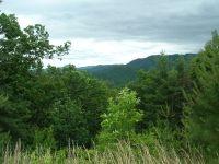 Home for sale: 46 Big Pine Trace, Bryson City, NC 28713