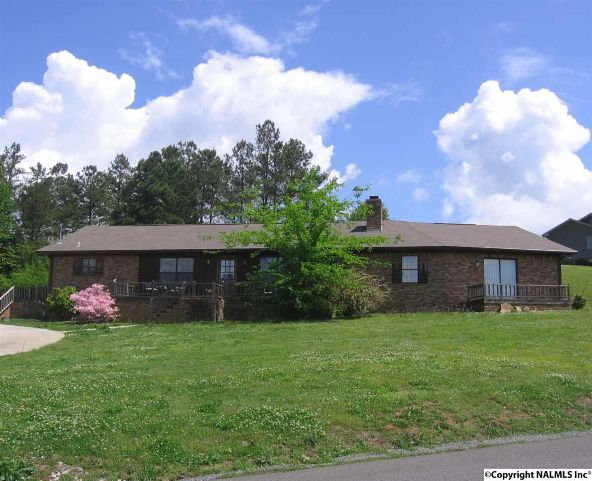 1525 Buck Island Dr., Guntersville, AL 35976 Photo 1