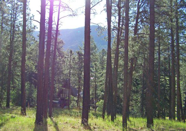 10 County Rd. 2153, Alpine, AZ 85920 Photo 6