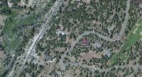 Home for sale: 787 Deer Trail, Portola, CA 96122
